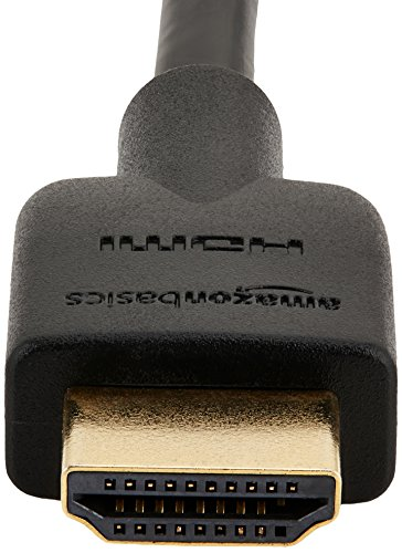 AmazonBasics High-Speed HDMI Cable
