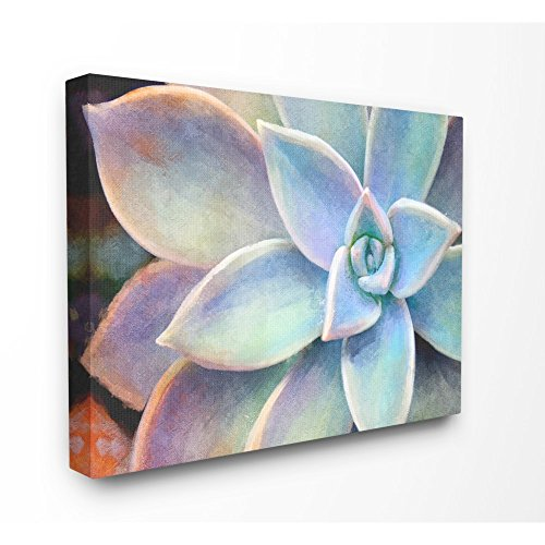 The Stupell Home Decor Collection Succulent Plant Vibrant Bloom Painting Stretched Canvas Wall Art 24×30 Multicolor