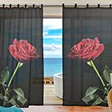 INGBAGS Bedroom Decor Living Room Decorations Red Rose Flower Pattern Print Tulle Polyester Door Window Gauze / Sheer Curtain Drape Two Panels Set 55×78 inch ,Set of 2 Review