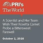 A Scientist and Her Team Wish Their Rosetta Comet Probe a Bittersweet Farewell | Lidia Jean Kott