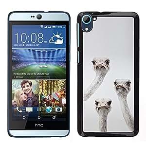 TopCaseStore / la caja del caucho duro de la cubierta de protección de la piel - Emu Ostrich Birds Grey Black White Funny - HTC Desire D826