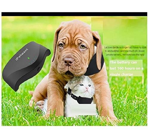 George zhang con la Funzione di di di addestramento del Cane, microlocator Pet, GPS satellitare, a Prova di Perdita, Impermeabile, Tracking e Collare di invio, Che è Lunga e Standby caa516