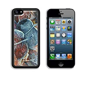 Autumn Leaves Covered in Frost Apple iPhone 5C Snap Cover Case Customized Made to Order Support Ready Premium Aluminium Deluxe Aluminium 5 inch (125mm) x 2 3/8 inch (62mm) x 3/8 inch (12mm) Liil iPhone 5C Professional Cases Touch Accessories Graphic Covers Designed Model Folio Sleeve HD Template Designed Wallpaper Photo Jacket Wifi 16gb 32gb 64gb Luxury Protector Wireless Cellphone Cell Phone