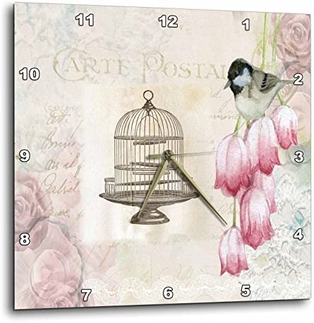 3dRose 3D Rose Image of French Postcard with Flowers and Old Bird Cage-Wall Clock, 10-inch DPP_224326_1