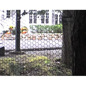 fence 6ft. Critterfence Brand Steel Deer Fence Garden Fencing Dog 75ft X 100ft Roll 6ft