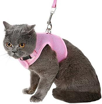 Arnés y correa para gato de BINGPET, a prueba de huidas, arnés de ...