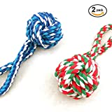 Jun Li pets toys, Pet training ball,Multi color and durable,2 Pack (toy ball color will be shipped randomly)