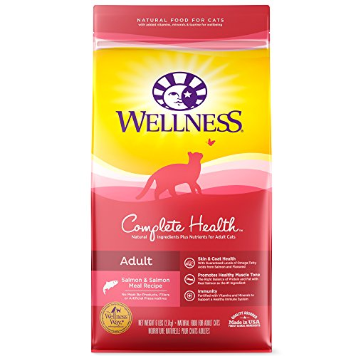 Wellness Complete Health Natural Dry Cat Food, Salmon & Salmon Meal Recipe, 6-Pound Bag