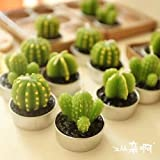 Astra Gourmet Handmade Decorative Unscented Cactus Tealight Candles for Party Birthday Holiday Wedding Dinner Spa Home Decoration, Set of 6
