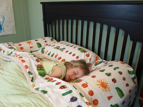 Set Of 2 Stay Put Big Girl And Boy Bed Semicircle Bed Rail