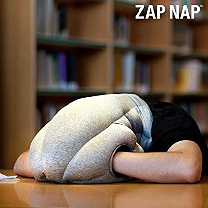 Zap Nap Alien Travel Napping Sleeping Cushion Pillow- Blue and Grey by Generic