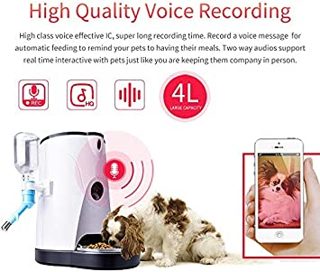 SDTSDZS Dispensador de Alimentos para Gatos/Perros con cámara WiFi HD 1080p Dispensador de Alimentos electrónico para Perros Perros y Gatos Correo de Voz Visión Nocturna 4L: Amazon.es: Productos para mascotas