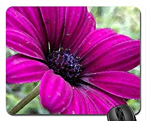 After the Storm Mouse Pad, Mousepad (Flowers Mouse Pad, 10.2 x 8.3 x 0.12 inches)