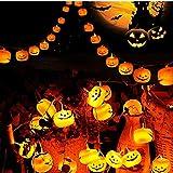 Halloween Lights, KALENI Battery Operated Outdoor String Lights,10ft 20 LED 3D Pumpkin Lanterns Halloween Decorations, Orange Jack-O-Lantern Halloween String Light for Halloween Party - Warm White