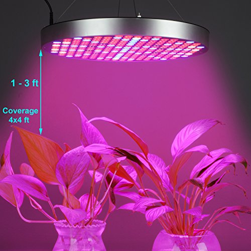 50W LED Grow Lights Bulb, Osunby UFO 250 LEDs Indoor Plants Light Full Spectrum with Red Blue UV IR White for Seedling, Vegetative and Flowering. by Osunby (Image #3)