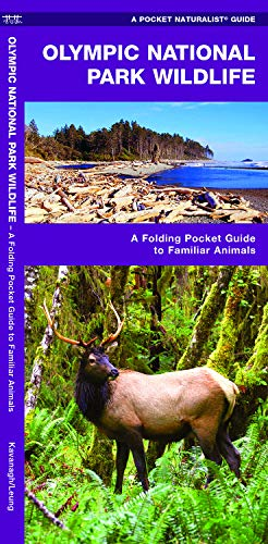 Olympic National Park Wildlife: A Folding Pocket Guide to Familiar Species (A Pocket Naturalist Guide)