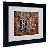Trademark Fine Art Old Barn Window Matted Framed Art by Lois Bryan with Black Frame, 11 by 14-Inch