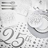 Sparkle and Shine Silver 25th Anniversary Deluxe Party Kit, Serves 24
