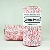 NEW!!! Coral Divine Twine