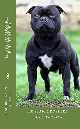 Le Staffordshire Bull Terrier Chiens De Race French