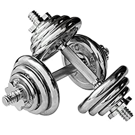 Viavito Unisex's Dumbbell Set-Chrome, 20 kg