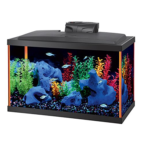 Aqueon tank black 10 gallon for Aqueon fish tank