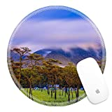 Luxlady Round Gaming Mousepad 34331687 Pine forest with mist and wildflowers field