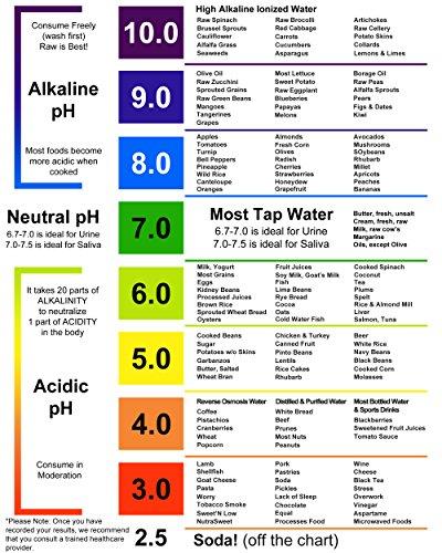 Scuba II Pool Tester Chlorine, pH, Alkalinity, Cyanuric Acid