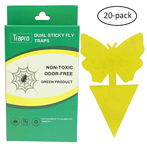 Dual Sticky Fly Traps for Houseplant Fly Insect Control, Non-Toxic and Eco-Friendly - 20 Pack