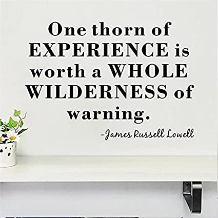 wall sticker zozoso one thorn experience inspirational