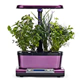 AeroGarden Harvest Elite WiFi with Gourmet Herbs Seed Pod Kit, Purple