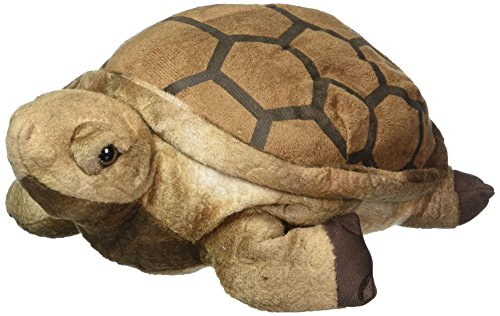 Wishpets 10  Tortoise Plush Toy