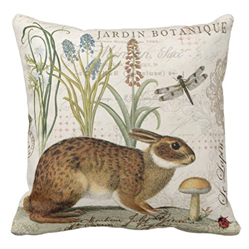Emvency Throw Pillow Cover Modern Vintage French Rabbit In the Garden Decorative Pillow Case Home Decor Square 18 x 18 Inch Cushion Pillowcase from Emvency