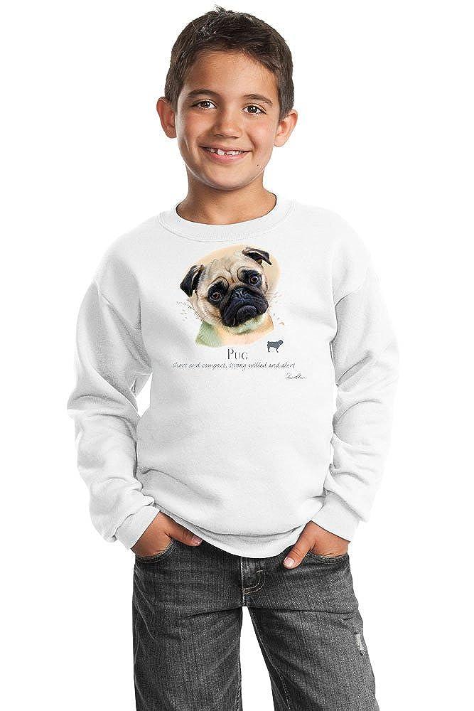Pug Youth Sweatshirt by Howard Robinson 20106