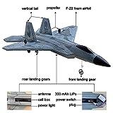 HAWK'S WORK 2 CH RC Airplane, F-22 RC Plane Ready