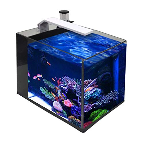 (GankPike 6-Gallon Saltwater Aquarium Marine Fish Tank Reef Tank with Lid, Protein Skimmer, Heater, LCD Digital Thermometer and Pump)