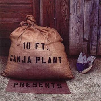 10 Ft Ganja Plant Presents Amazon Com Music