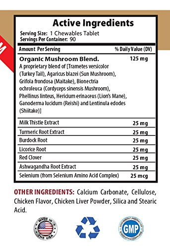 pet immune balance - IMMUNE SUPPORT AND HEALTH - FOR DOGS TREATS - PREMIUM ADNVACED FORMULA - older dog care - 180 Treats (2 Bottle) by PETS HEALTH SOLUTION (Image #2)