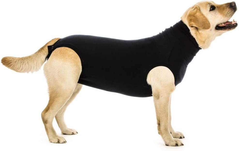 Suitical Recovery Popularity Suit for - Dogs Inexpensive Black