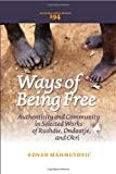 Ways of Being Free : Authenticity and Community in Selected Works of Rushdie, Ondaatje, and Okri, Mahmutović, Adnan, 904203534X