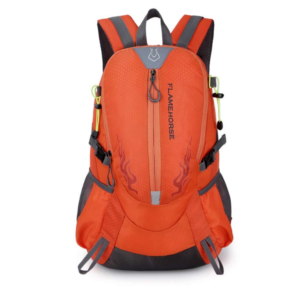 PYIP Rucksack Umhängetasche männlichen Sport Rucksack Bergsteigen Paket große Kapazität Reise Tasche 49 cm  30 cm  19 cm B07NZPG31C Daypacks Moderner Modus