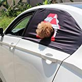Anferstore Foldable Car Visor Cover Window Sun Shade Pet Dog Hang Out Car Window Shade