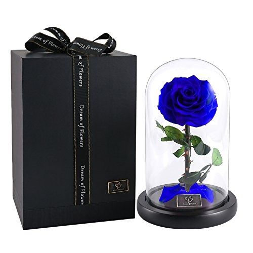 Dome Rose - Dream of Flowers Beauty and The Beast Rose, Forever Rose, Enchanted Rose, Glass Dome Black Wood Base, Valentine's Party Gifts, Wedding Gifts, Best Gift for Her (Blue)