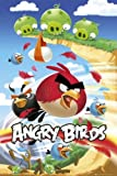 "Angry Birds - Gaming Poster (Attack) (Size: 24"" x 36"") (By POSTER STOP ONLINE)"