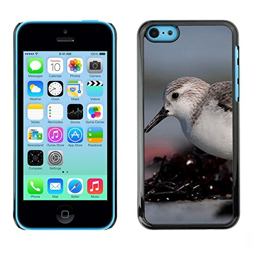 Premio Sottile Slim Cassa Custodia Case Cover Shell // F00003120 oiseau // Apple iPhone 5C