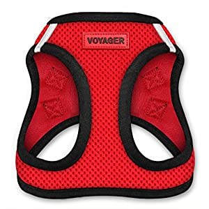 Voyager All Weather No Pull Step-in Mesh Dog Harness with Padded Vest, Best Pet Supplies, Extra Small, Red Base