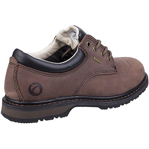 Cotswold Stonefield Mesdames lacets de chaussure de randonnée Crazy horse LFFo5