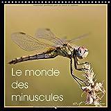 Le Monde des Minuscules 2017: Mise en Beaute des Arthropodes (Calvendo Animaux) (French Edition)