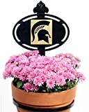 Henson Metal Works Michigan State University Collegiate Logo Wall Mounted Flower Pot Holder