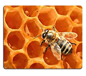 Insect Bee Honeycomb Worker Animal Mouse Pads Customized Made to Order Support Ready 9 7/8 Inch (250mm) X 7 7/8 Inch (200mm) X 1/16 Inch (2mm) High Quality Eco Friendly Cloth with Neoprene Rubber Luxlady Mouse Pad Desktop Mousepad Laptop Mousepads Comfortable Computer Mouse Mat Cute Gaming Mouse pad